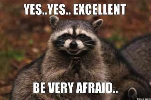 yesyes-excellent-be-very-afraid-racoon